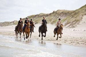 Reddingsbrigade-wijk-aan-zee-paardrijden